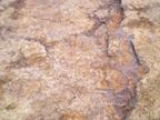 磷矿石的分布及其特点