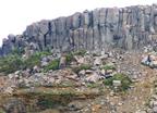 寄主玄武岩具原生岩浆性质的10条证据